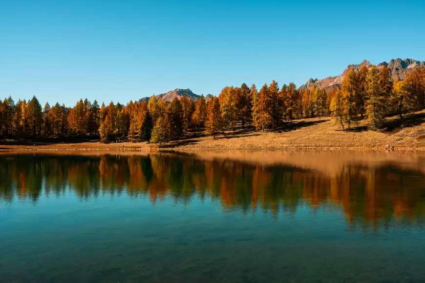 Chamois; Italy